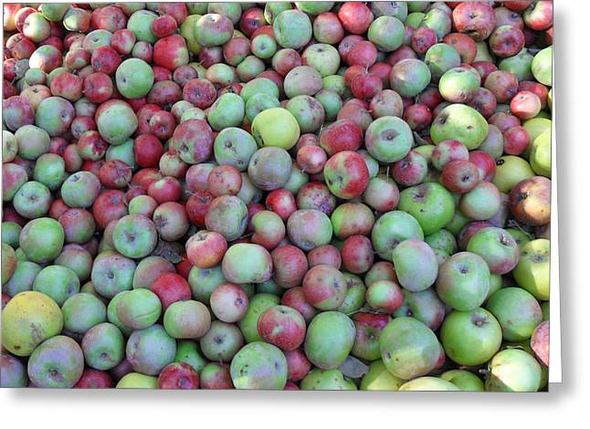 Fuji Apples Greeting Card