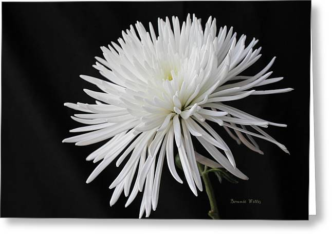 Fuji Mum Greeting Card