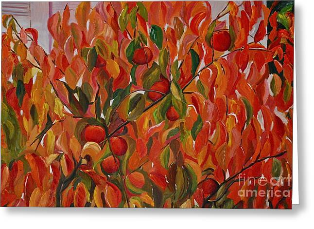Fuyu Persimmon Tree Greeting Card by Amy Fearn