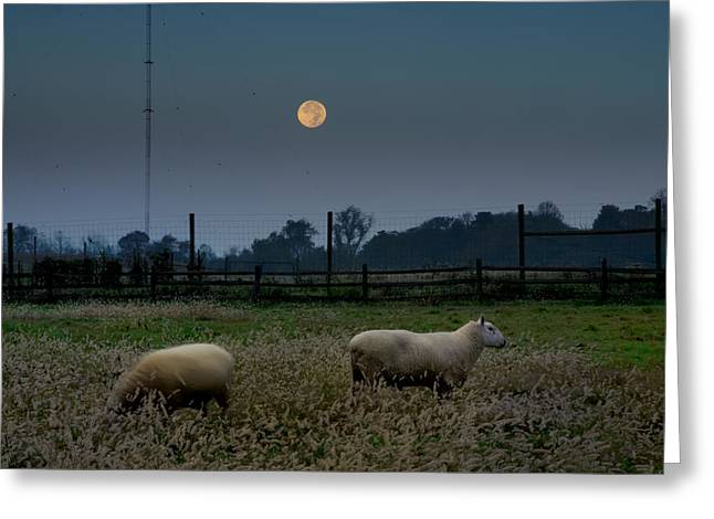 Full Moon At Erdenheim Farm Greeting Card by Bill Cannon