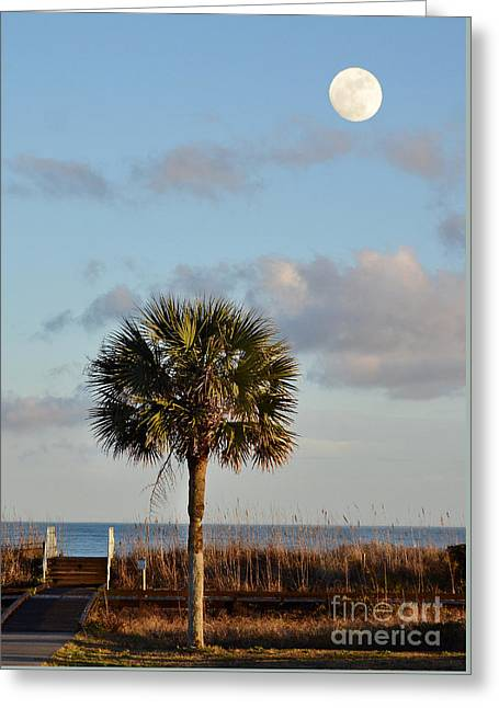 Full Moon At Myrtle Beach State Park Greeting Card