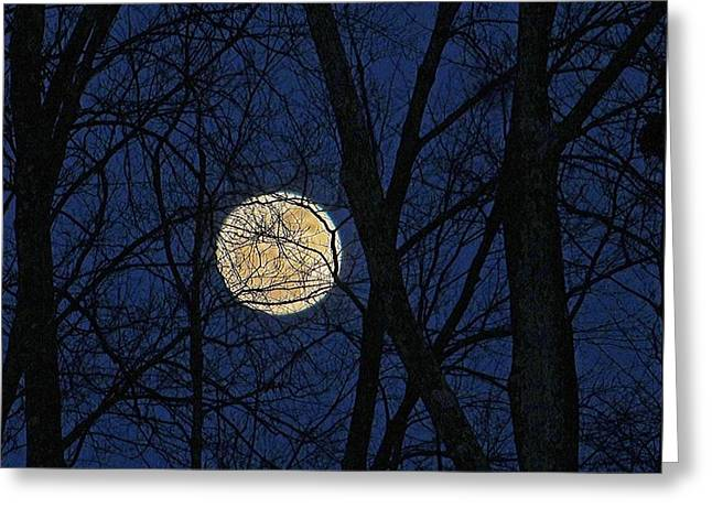 Full Moon March 15 2014 Greeting Card