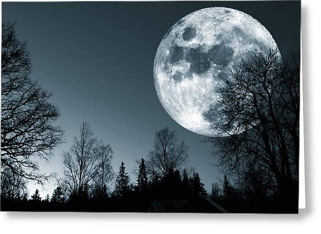 Full Moon Over Dark Forest Greeting Card