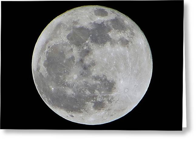 Full Moon Over Florida Greeting Card by Tim Townsend