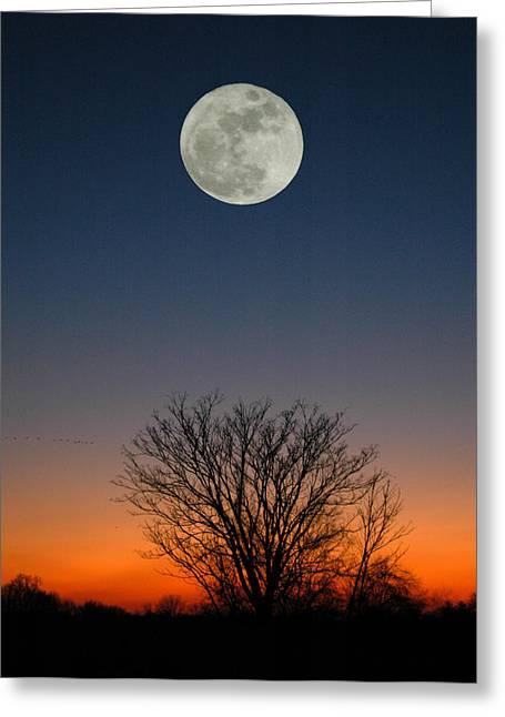 Full Moon Rising Greeting Card by Raymond Salani III