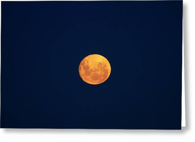 Full Moon Seen From Dunedin, South Greeting Card by David Wall