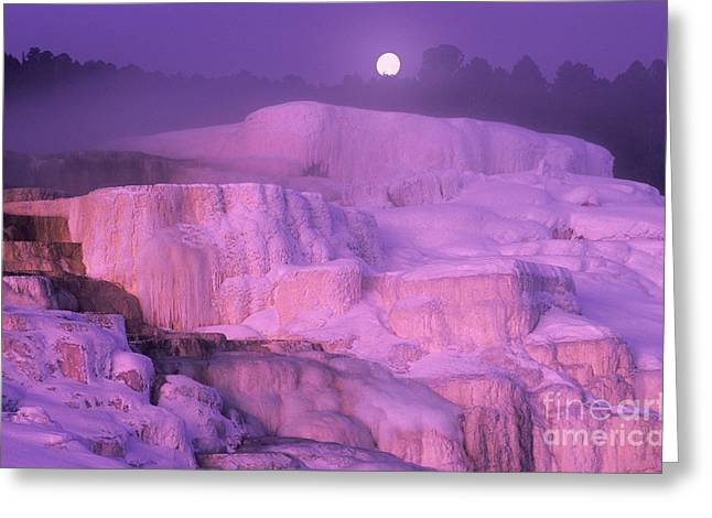 Full Moon Sets Over Minerva Springs On A Winter Morning Yellowstone National Park Greeting Card