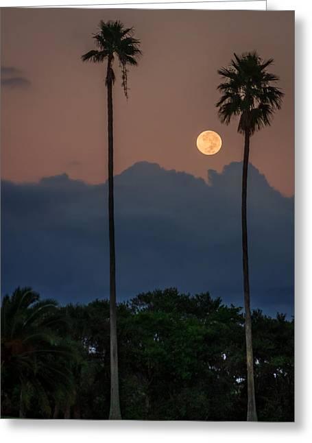 Full Moon Setting Greeting Card