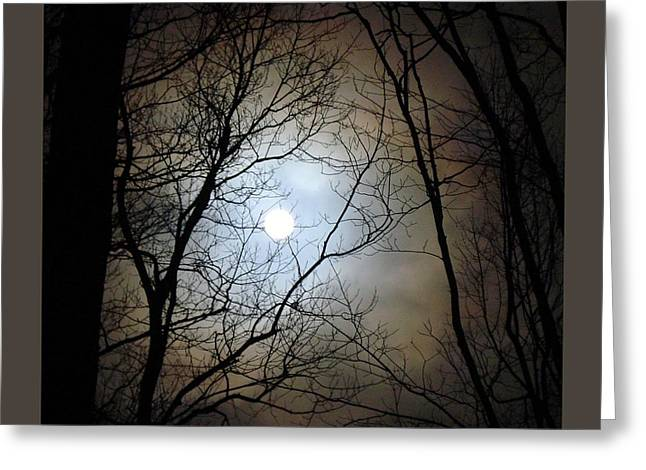 Full Moon Through The Trees Greeting Card by Patricia Overmoyer