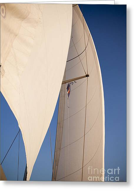 Full Sails Greeting Card