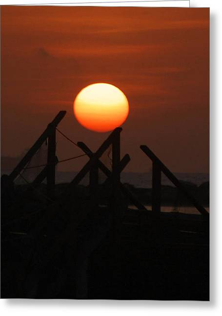 Greeting Card featuring the photograph Full Sun by Leticia Latocki
