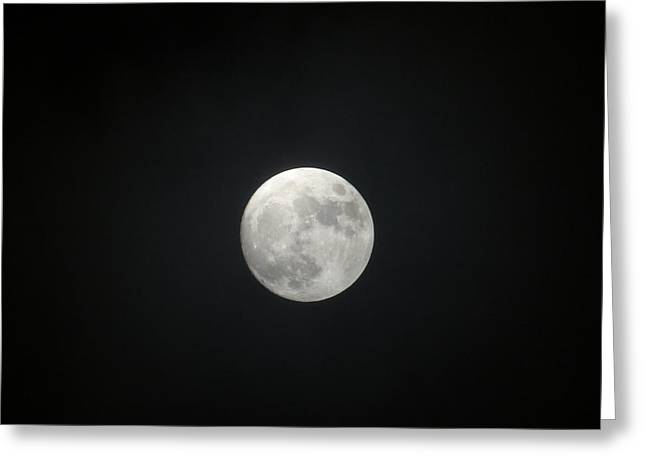 Full Wolf January Moon Greeting Card