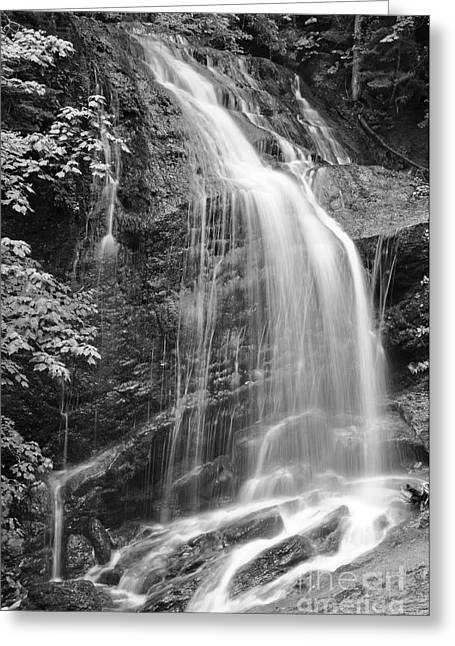 Fuller Falls Waterfall Black And White Greeting Card