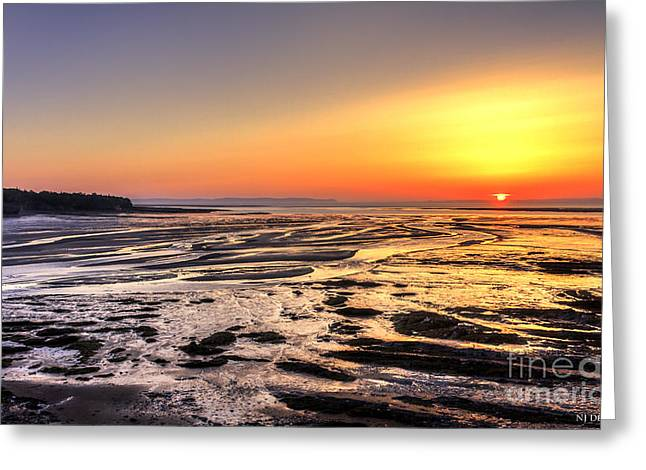 Fundy's Mud Flats Greeting Card by Nancy Dempsey