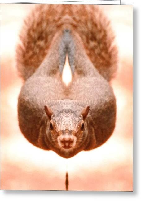 Flying Funky Brown Squirrel Greeting Card by Belinda Lee