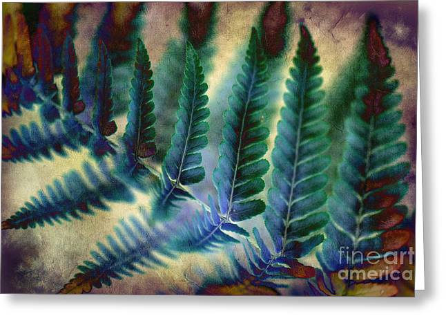 Funky Fern. Greeting Card
