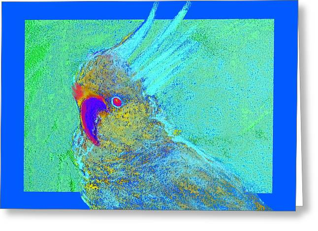 Funky Sulphur Crested Cockatoo Bird Art Prints Greeting Card by Sue Jacobi