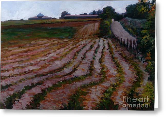 Furrowed Field Greeting Card