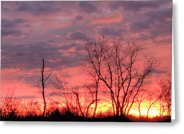 Fuschia And Purple Sunset Greeting Card by Deborah Smolinske