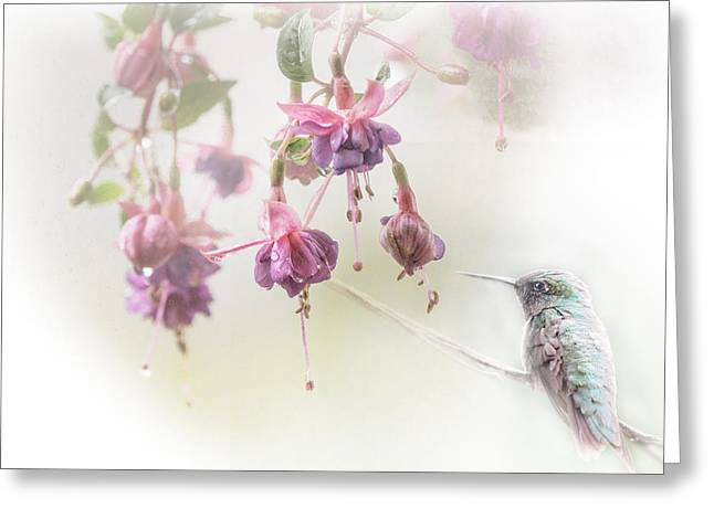 Fuschia Dreams Greeting Card