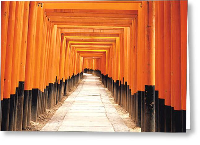 Fushima-inari Kyoto Japan Greeting Card by Panoramic Images