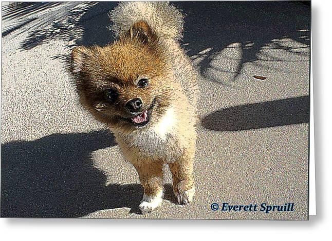 Fuzz Ball Greeting Card by Everett Spruill