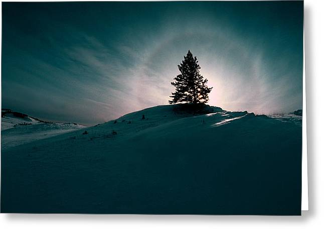 Fv4157, Will Datene Pine Tree On A Hill Greeting Card by Will Datene