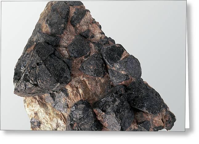 Gadolinite In Rock Groundmass Greeting Card