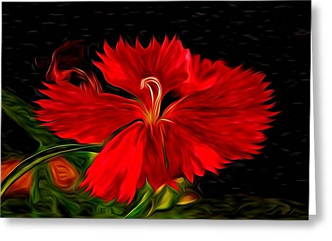 Galactic Dianthus Greeting Card by David Kehrli