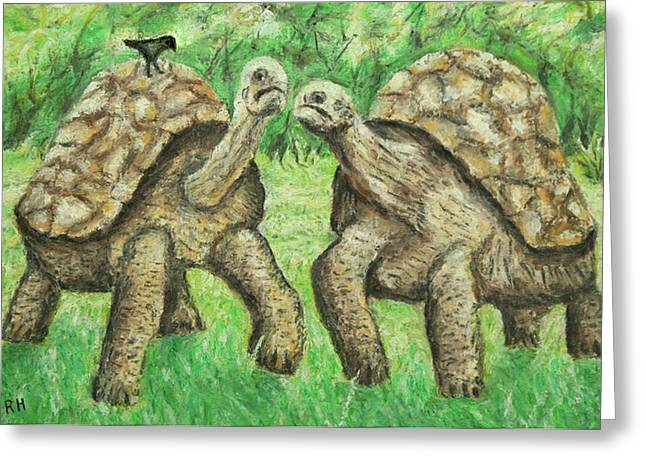 Galapagos Giant Tortoise Greeting Card by Ronald Haber