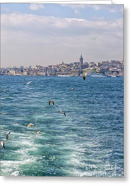 Galata Region 01 Greeting Card by Antony McAulay