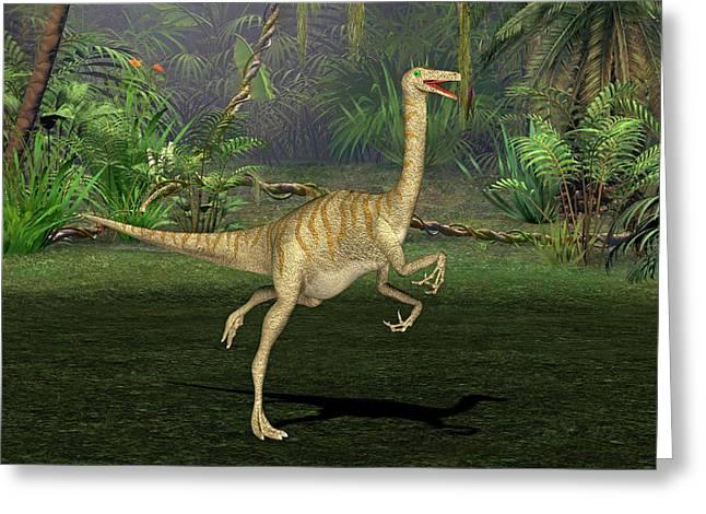 Gallimimus Dinosaur Greeting Card by Friedrich Saurer