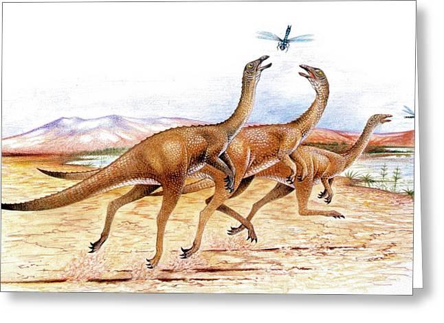 Gallimimus Dinosaurs Greeting Card by Deagostini/uig