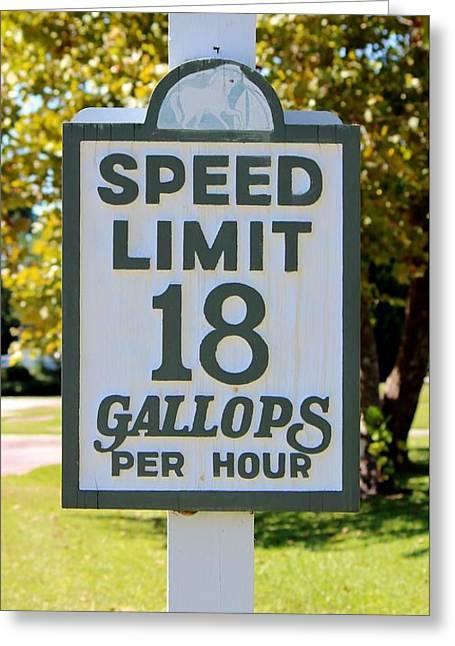 Gallops Per Hour Greeting Card by Cynthia Guinn