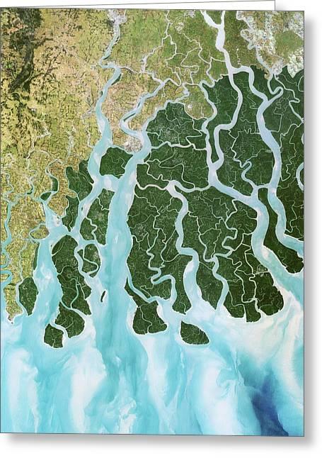 Ganges River Delta Greeting Card