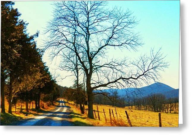 Gap Road Greeting Card by Joyce Kimble Smith