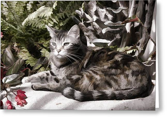 Garden Cat Greeting Card by Photographic Art by Russel Ray Photos