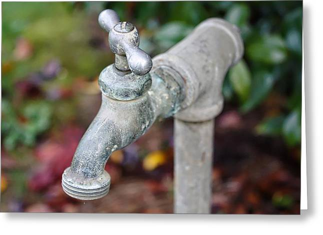 Garden Faucet Greeting Card by Cathie Tyler