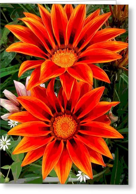 Garden Flowers Greeting Card by Diana Burlan
