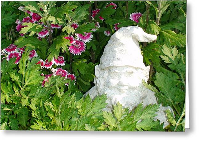 Garden Gnome Greeting Card