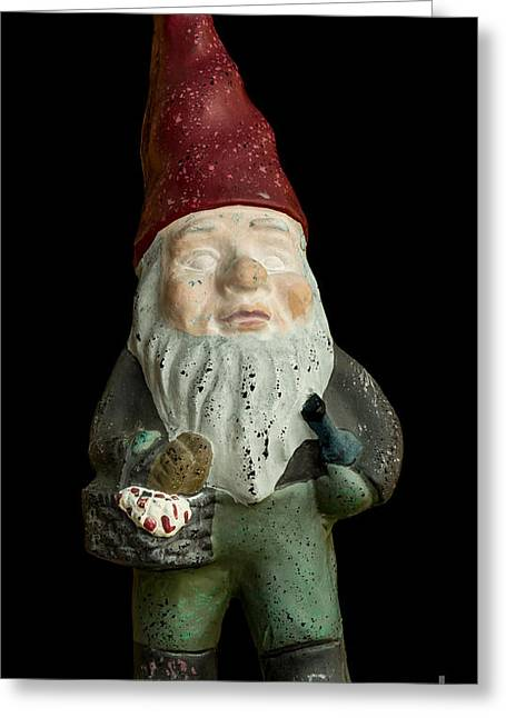 Garden Gnome Greeting Card by Edward Fielding