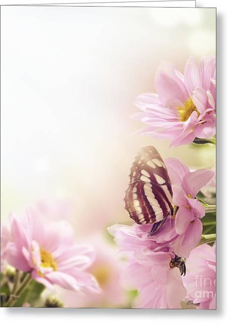 Garden Greeting Card by Jelena Jovanovic