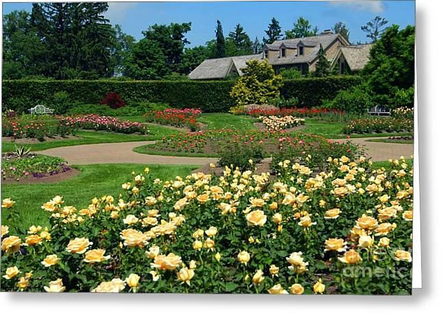 Garden Greeting Card by Kathleen Struckle