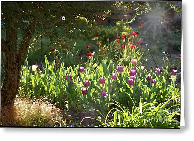 Greeting Card featuring the photograph Garden by Leslie Hunziker