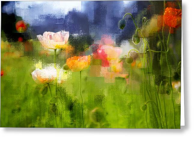 Greeting Card featuring the photograph Garden Of Poppies by Linde Townsend