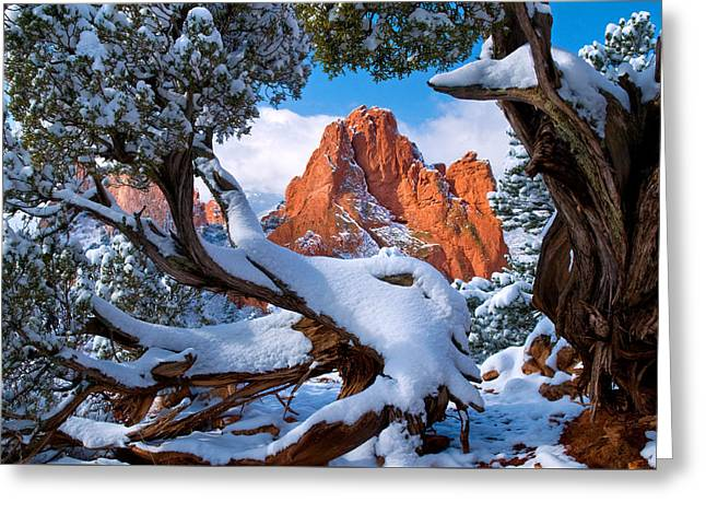 Garden Of The Gods Framed By Juniper Trees Greeting Card by John Hoffman