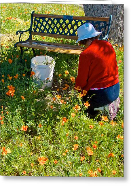 Garden Party In Park Sierra-ca Greeting Card by Ruth Hager