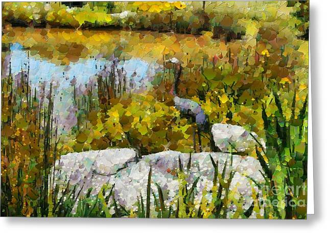 Garden Pond Greeting Card by Fran Woods