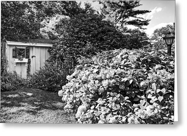 Garden Shed Greeting Card