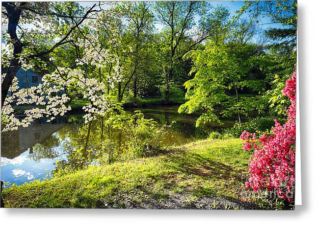Garden State Spring At The Canal Greeting Card by George Oze